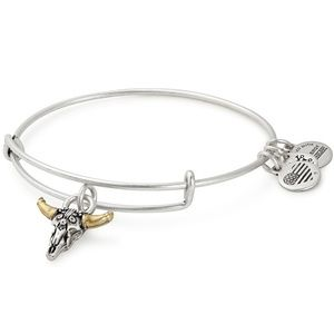 Alex and Ani Spirited Skull Charm Expandable Wire